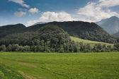 Montañas con hierba verde — Foto de Stock