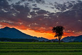 Sunset view with clouds over alps — Stock Photo