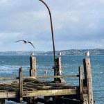 Old pier. Cobh, Ireland — Stock Photo #7142775