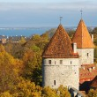 Stock Photo: Two Towers. Tallinn, Estonia