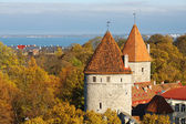Two Towers. Tallinn, Estonia — Stock Photo
