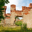 Ruined house - Stock Photo