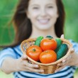 Stock Photo: Beautiful wombasket vegetables