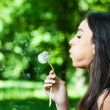 Young girl blowing dandelion — Stock Photo