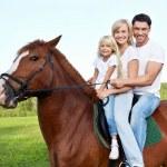 Horse-riding — Stock Photo #7692420