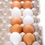 Egg on box close up — Stock Photo