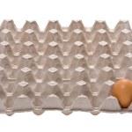 Egg on box on white — Stock Photo