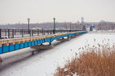 Winter Bridge in the park — Foto de Stock