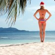 Stock Photo: Young woman on the beach in santa's hat