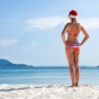 Young woman on the beach in santa's hat — Stock Photo #7857749