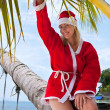Stock Photo: Young woman on the beach in santa's costume siting on the palm