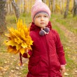 Little girl with yellow leaves — Stock Photo #7153421