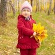 Little girl with yellow leaves — Stock Photo #7182930