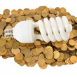 Energy Saving — Stock Photo #6944297