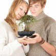 Young couple with bonsai tree — Stock Photo