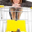Girl with shopping cart - Stock Photo