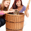 Female friends with cat — Stock Photo #7326435