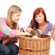 Female friends with cat — Stock Photo #7326770