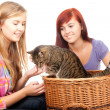 Stock Photo: Female friends with cat
