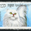 Stamp printed by Cambodia — Stock Photo #6983974