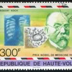 ������, ������: Robert Koch