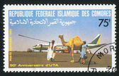 Camel — Zdjęcie stockowe