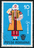 Suceava woman — Stock Photo