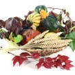 Thanksgiving basket — Stock Photo