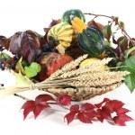 Thanksgiving basket — Stock Photo #7356625