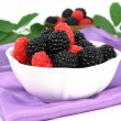 Stock Photo: Forest berries