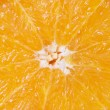 Background of juicy fresh orange — Stock Photo