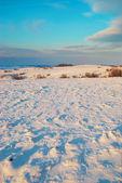 Colinas nevadas — Foto de Stock