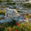 Ruins of antique Chersonesos. Ukraine, Sevastopol. - Stock Photo