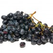 Black grapes isolated on white. — Stock Photo