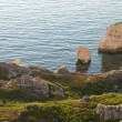 Coastline with many big rocks. — Stock Photo #7722699