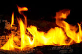 Flame tips on the firewood. — Stock Photo