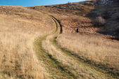 сельская дорога через поле трава. — Стоковое фото