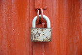 Lock on the red door. — Stock Photo