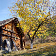 Autumn time and the first snow: open-air enthographical museum in the capit — Stock Photo