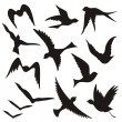 Flying bird silhouettes — Stock Vector