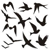 Flying bird silhouettes — Διανυσματικό Αρχείο