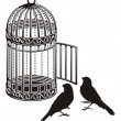 cage bird — Vettoriale Stock