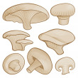 Woodcut mushrooms — Stock Vector