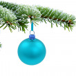 Christmas evergreen spruce tree and blue glass ball — Stock Photo #6818140