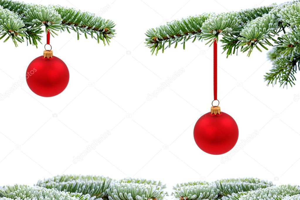 Christmas  evergreen tree and red glass ball on white — Stock Photo #7481185