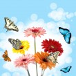 Stock Photo: Tropical butterflies on flowers