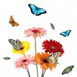 Tropical butterflies on a flowers — Stok fotoğraf