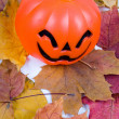 Halloween pumpki — Stock Photo #7312110