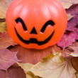Halloween pumpki — Stock Photo