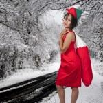 A beautiful woman elf — Stock Photo